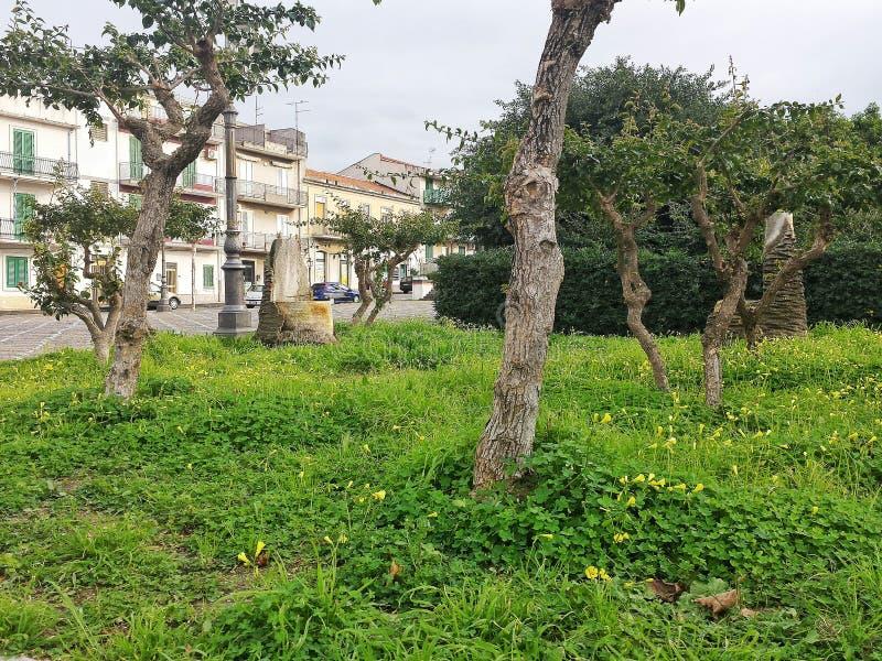 Parco verde fotografie stock