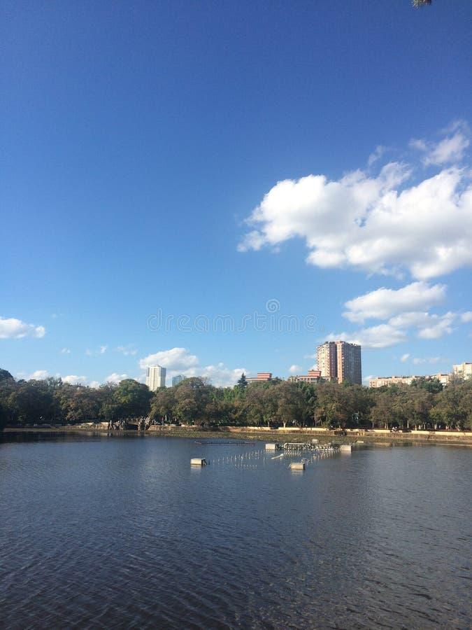 Parco verde del lago fotografie stock libere da diritti
