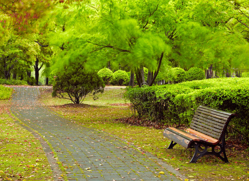 Parco verde della città. Shanghai, Cina fotografia stock