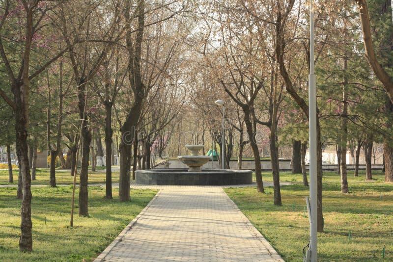 Parco vicino al museo di Amir Temur fotografie stock