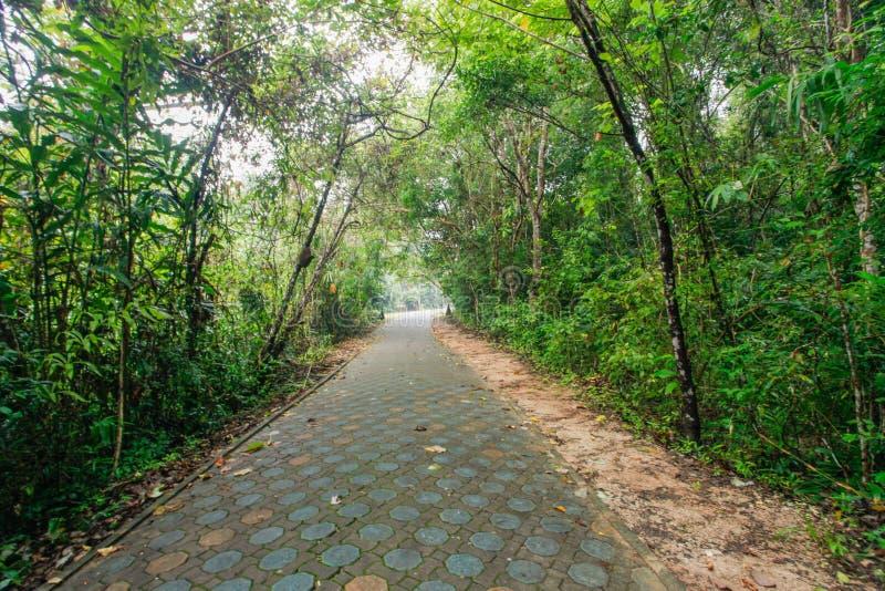 Parcs naturels photo libre de droits