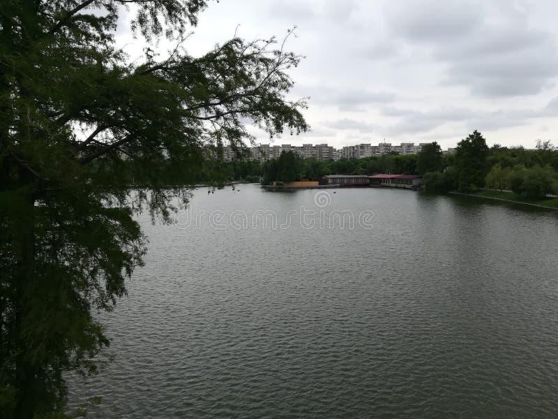 Parcul Tineretului à Bucarest photos libres de droits
