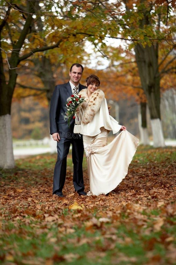 pardag deras bröllop arkivbilder