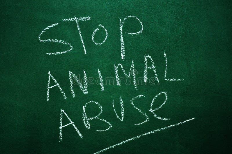 Pare o abuso animal foto de stock