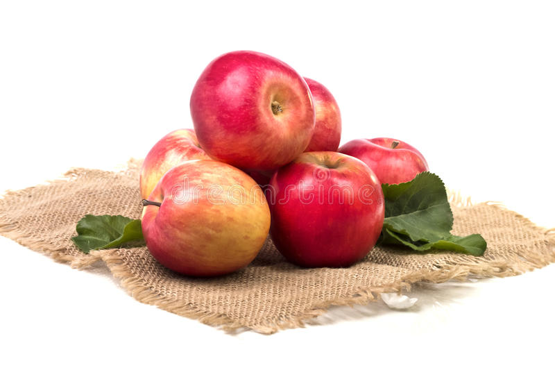 Parecchie grandi mele mature su tela di sacco fotografia stock libera da diritti