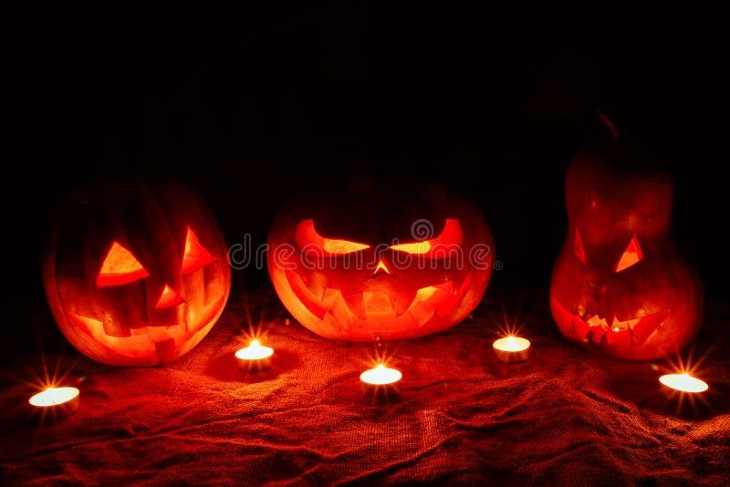 Parecchie zucche molto spaventose di Halloween, con uno sguardo fisso minaccioso e fotografia stock