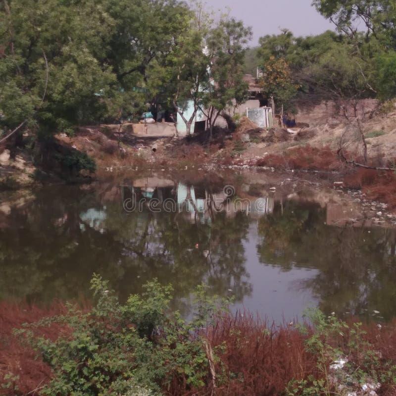 Pareciendo un estanque hermoso en India imagenes de archivo