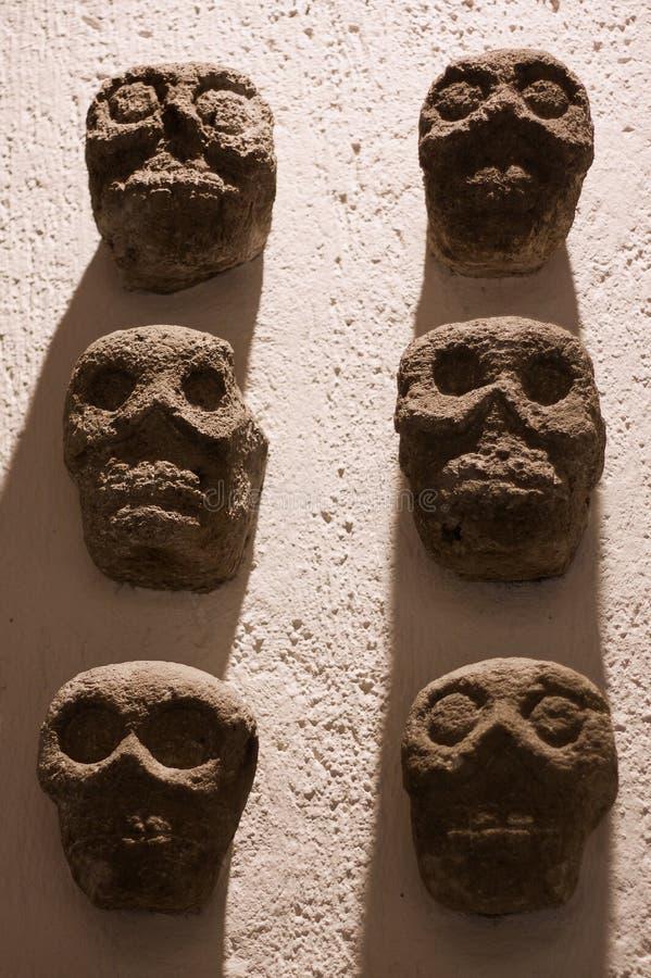 Pared azteca de los sculls del museo del monasterio de México Oaxaca Santo Domingo imagen de archivo libre de regalías