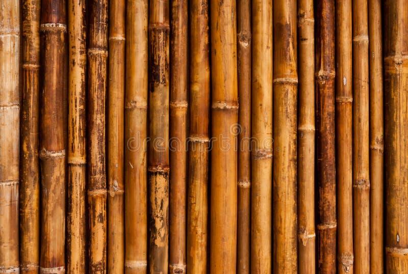 Pared de bambú de la casa del estilo tailandés foto de archivo libre de regalías