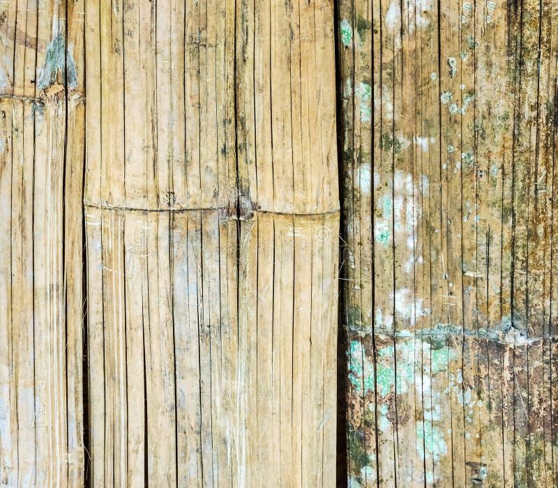 Pared de bambú vieja de la armadura fotografía de archivo libre de regalías