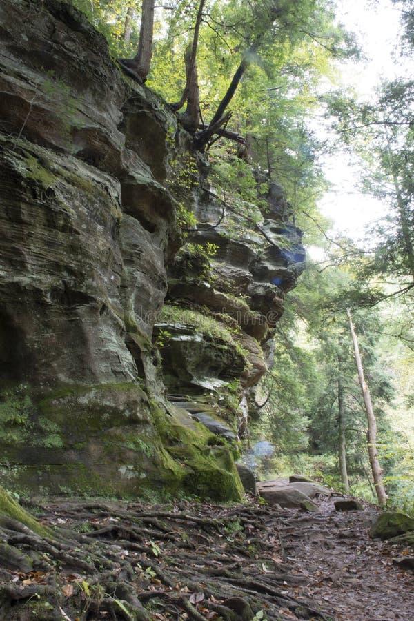 Pared de la garganta, bosque del estado de las colinas de Hocking imagen de archivo libre de regalías
