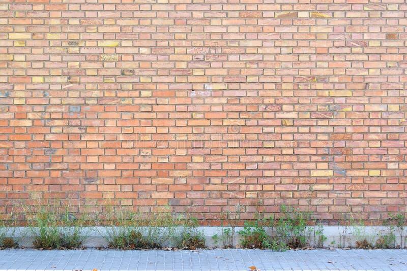 Pared de ladrillo roja abandonada con un poco de plantas y acera como fondo de la calle imágenes de archivo libres de regalías
