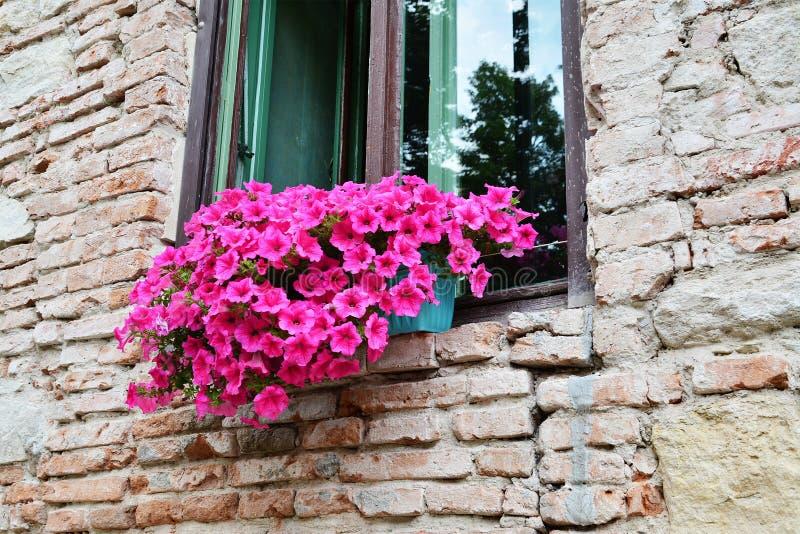 Pared de ladrillo vieja con las flores en la ventana imagen de archivo