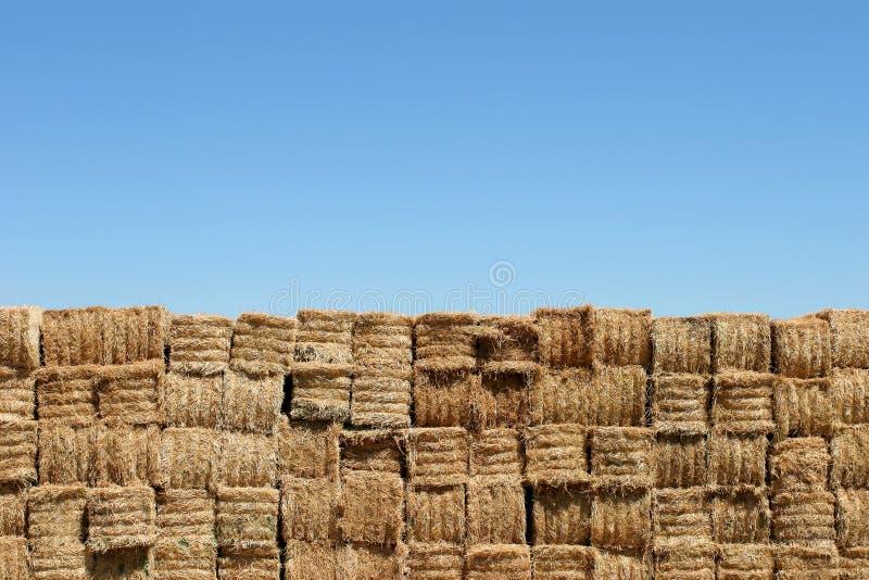 Download Pared De Las Balas De Heno Contra El Cielo Azul Imagen de archivo - Imagen de granja, hierba: 179841