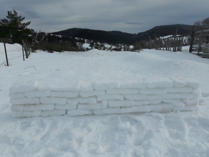 Pared de los ladrillos de la nieve fotografía de archivo libre de regalías