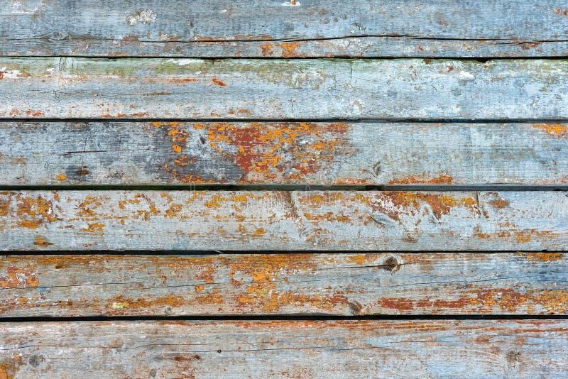 Pared de madera del vintage fotos de archivo