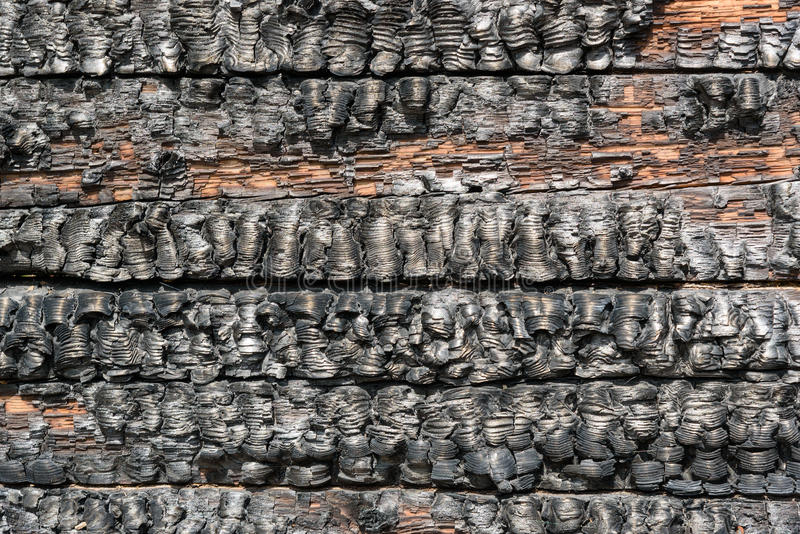 Pared de madera quemada foto de archivo