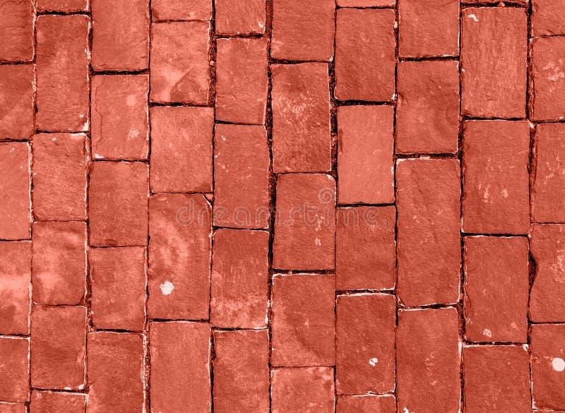 Pared de piedra hecha con los cuadrados Color coralino de vida del año 2019 Concepto principal de la tendencia fotografía de archivo libre de regalías