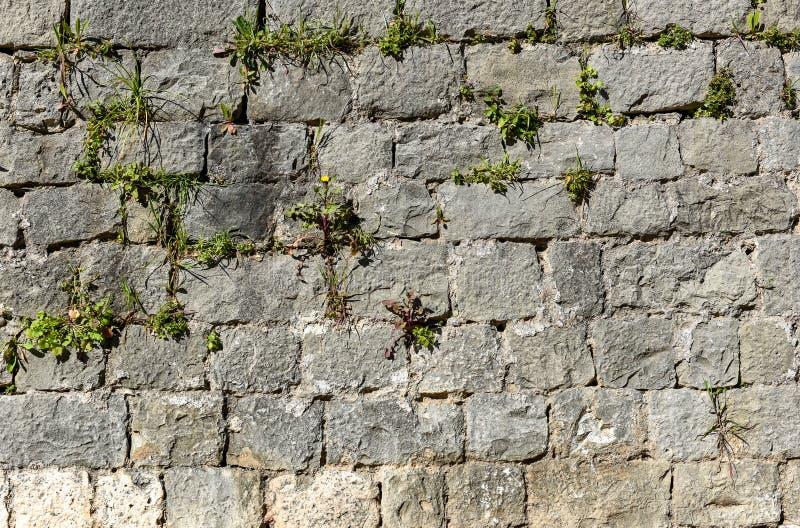 Pared de piedra vieja del castillo hecha de las losas de piedra del ladrillo fotografía de archivo