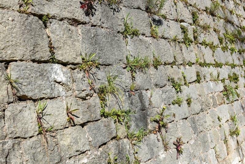 Pared de piedra vieja del castillo hecha de las losas de piedra del ladrillo imágenes de archivo libres de regalías