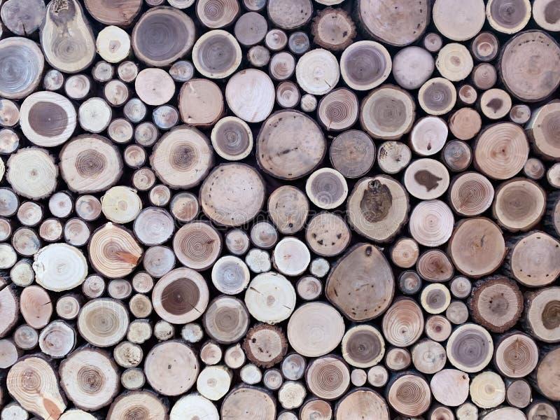 Pared de registros de madera apilados como fondo foto de archivo libre de regalías