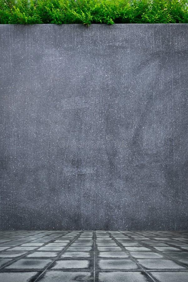 Pared del muro de cemento o del m rmol y piso concreto con - Cemento decorativo para paredes ...