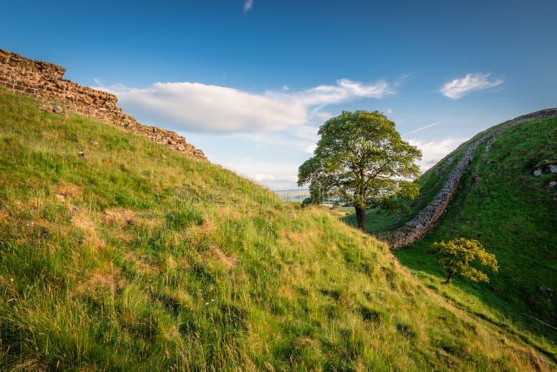 Pared del ` s de Hadrian en el sicómoro Gap imagen de archivo libre de regalías