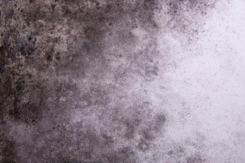 Pared gris melancólica con el molde foto de archivo