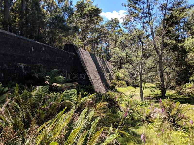 Pared Tasmania de la presa de París del soporte imagen de archivo
