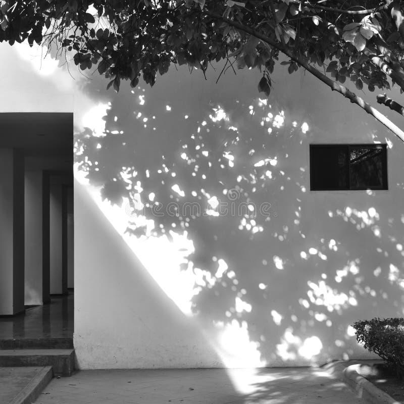 Pared y sombra foto de archivo libre de regalías