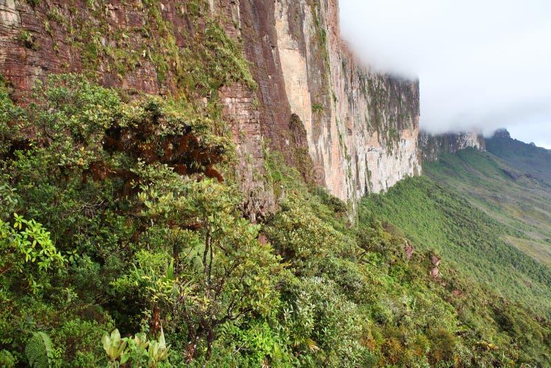 A parede íngreme da rocha de Monte Roraima imagens de stock