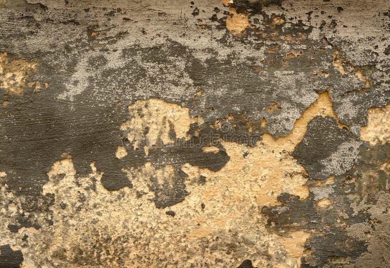 Parede antiga, fundo, textura, emplastro, pintura gasto, ce velho foto de stock