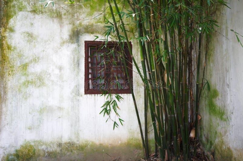 Parede com janela e bambu no jardim chinês imagem de stock royalty free