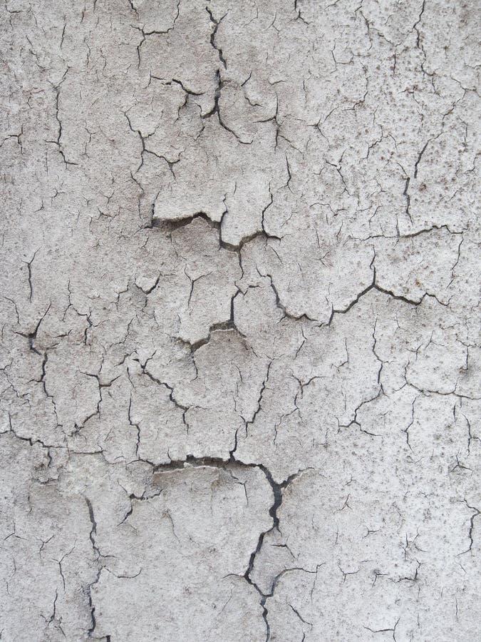 Parede concreta pintada do cimento imagens de stock