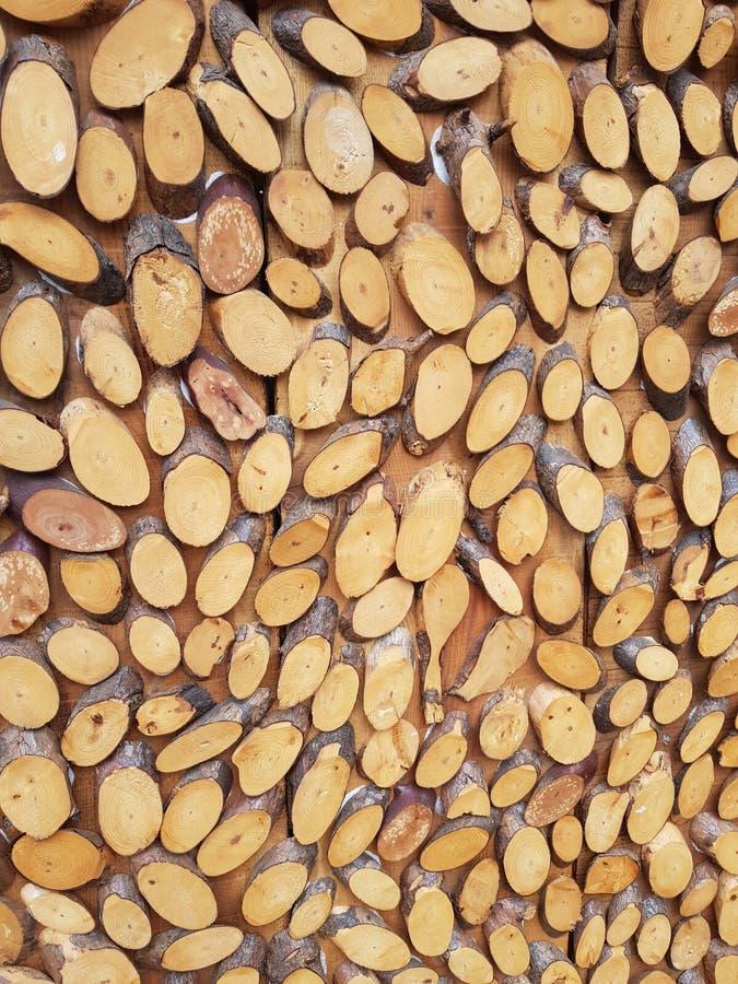 Parede da árvore imagens de stock