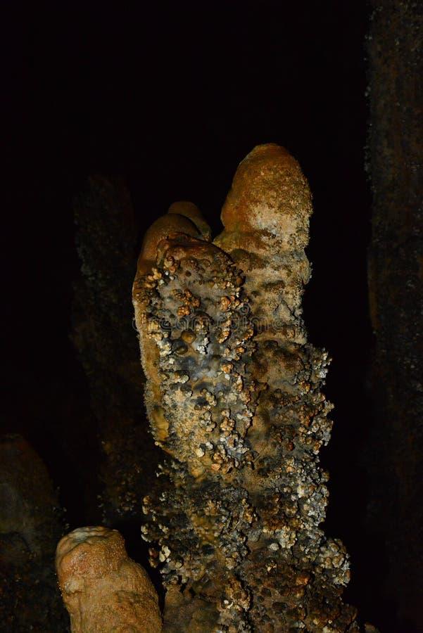 Parede da pedra calcária em uma caverna coberta com o dripstone, lago Lan de Cheow, Tailândia ilustração royalty free