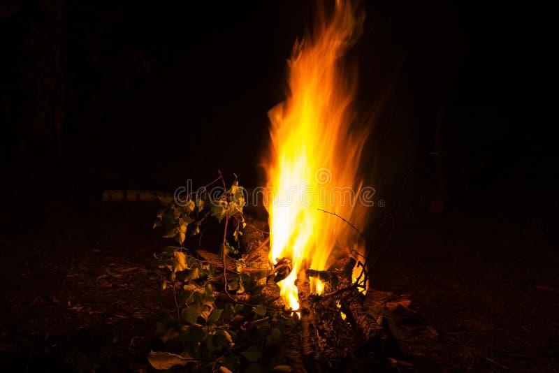 Parede das flamas Tiro da noite imagens de stock royalty free