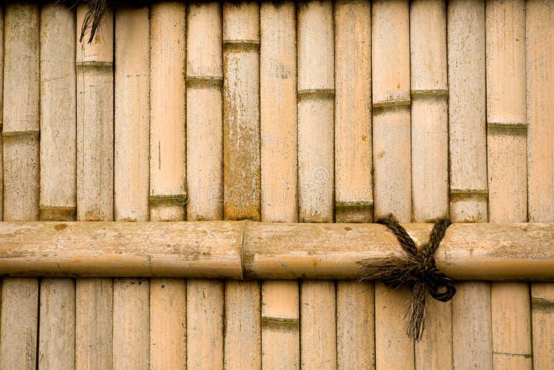 Parede de bambu natural imagens de stock royalty free