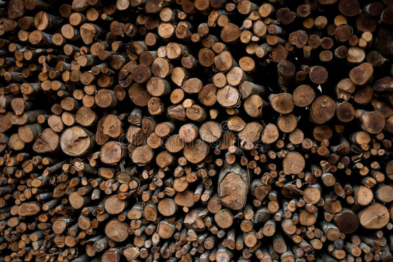 Parede de logs de madeira empilhados como o fundo fotos de stock royalty free