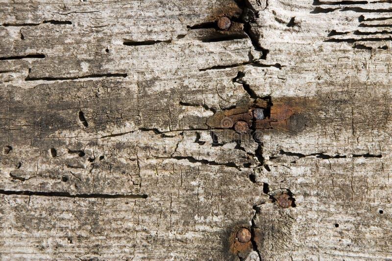 Parede de madeira envelhecida foto de stock royalty free