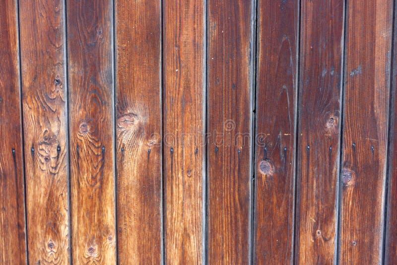 Parede de madeira fundo natural da madeira do teste padr?o foto de stock