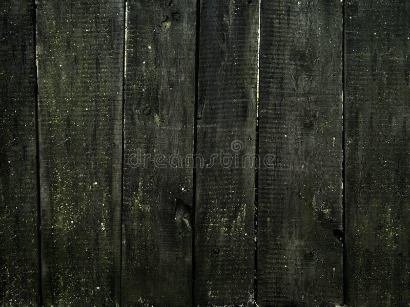 Parede de madeira musgoso do vintage imagem de stock royalty free