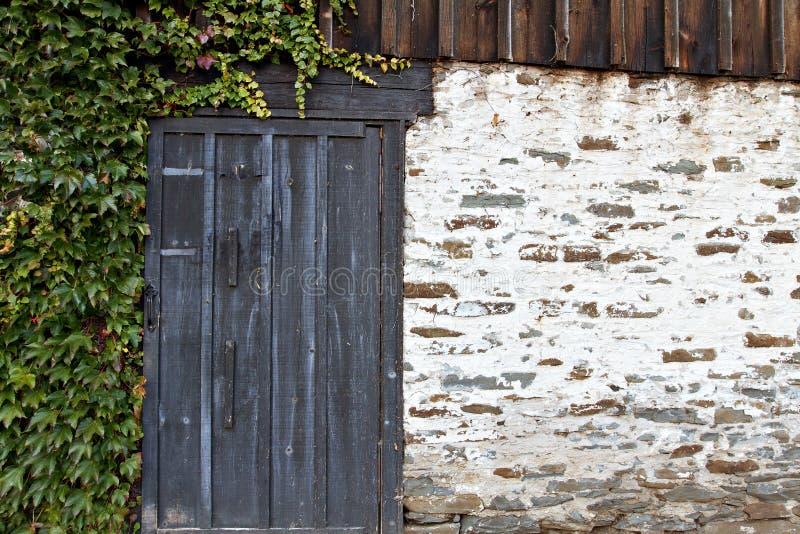 Parede de pedra com porta e a hera resistidas imagem de stock royalty free