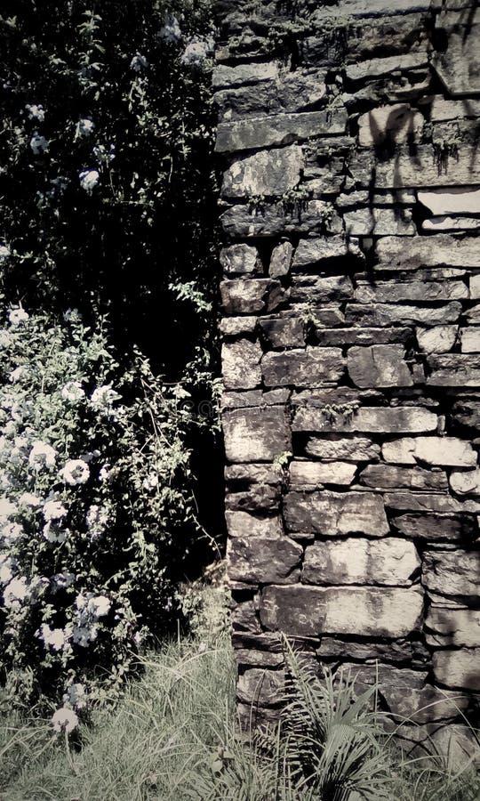Parede de pedra do século do período colonial fotografia de stock royalty free
