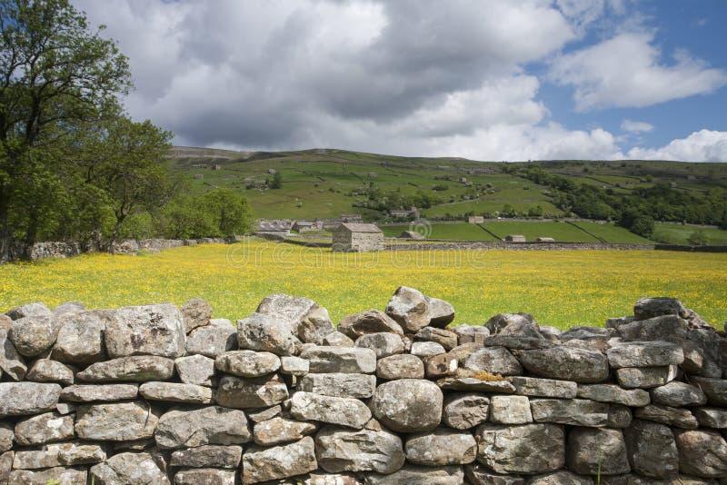 Parede de pedra e celeiro, Swaledale, Dales de Yorkshire fotografia de stock