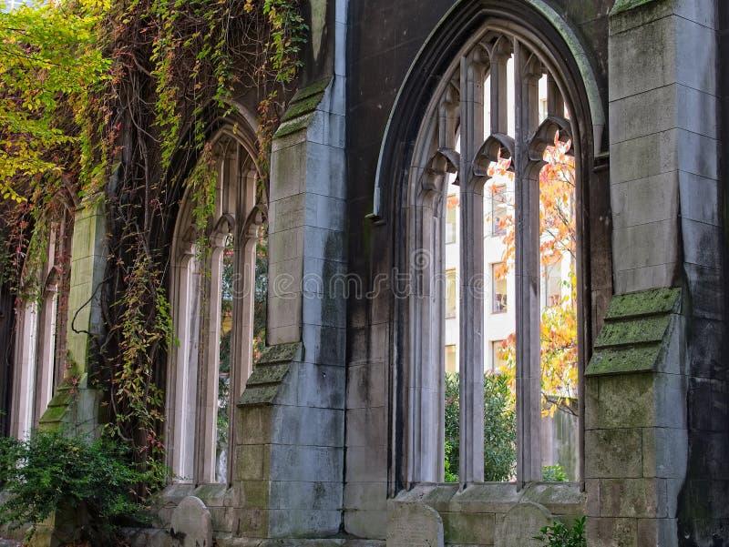 Parede de pedra e janelas góticos com videiras e árvores foto de stock
