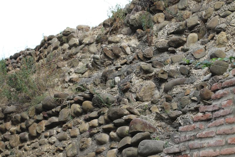 Parede de pedra e plantas nesta fotografia de stock royalty free