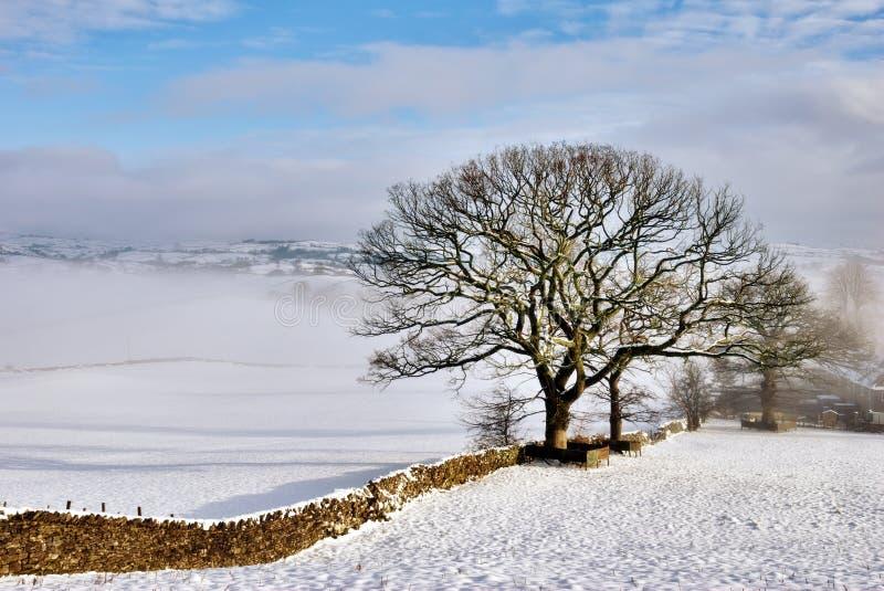 Parede de pedra na neve do inverno fotos de stock