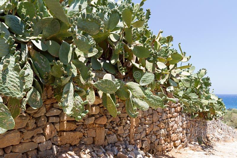 Parede de pedra seca na Creta de Spinalonga fotografia de stock royalty free
