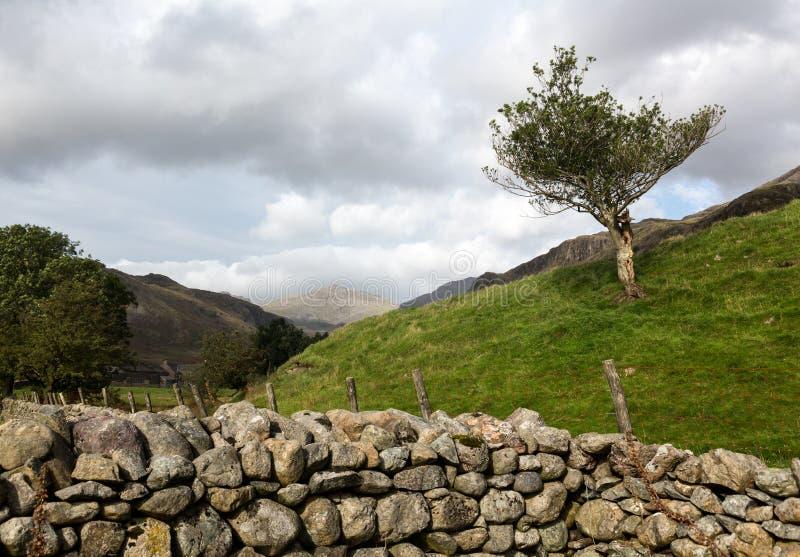 Parede de pedra velha no distrito do lago foto de stock royalty free